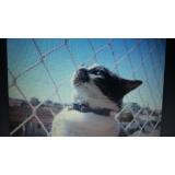 quanto custa rede de proteção animal na Vila Imperial